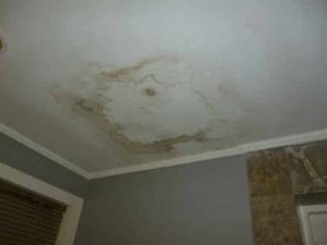 Mould growth on the ceiling