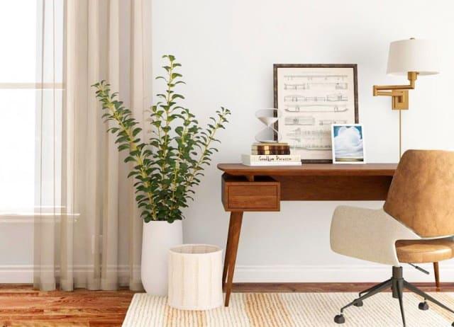 Study room desk with floor plant beside it